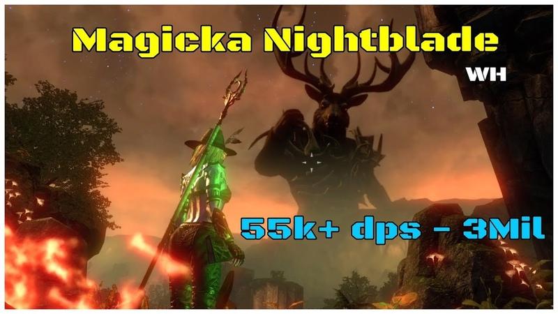 Magicka Nightblade Build (55k dps - 3 Mil test) Wolfhunter