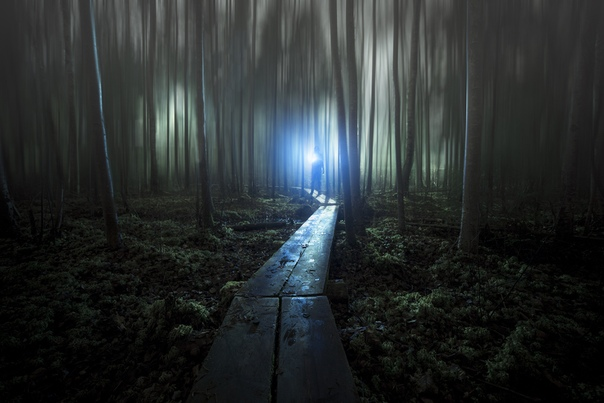 «Сад мыслителя» Фото: Mia Suutari