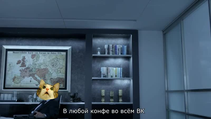Самый влиятельный кот в ВК