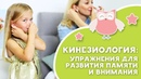 КИНЕЗИОЛОГИЯ: упражнения для развития памяти и внимания [Любящие мамы]