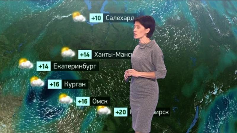 Погода сегодня, завтра, видео прогноз погоды на 21.9.2018 в России и мире