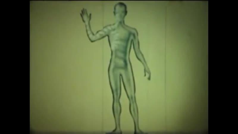 НаучФильм. Лимфатическая система.