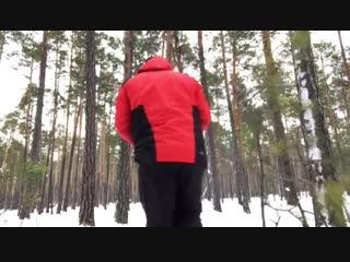Тимерташ Храбрый Хан (Сургут) сын Леди и Нурика (Тимерташ Железная Леди + Олимпик Стар Нео-Нуар)www.timertash.ru