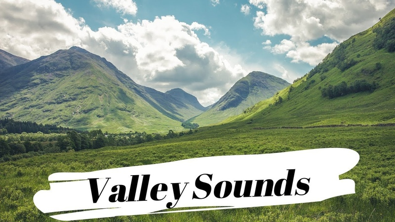 Peaceful Nature Sounds | Ambient Valley Sounds Wind Birds For Mind Healing, Meditation, Relaxation