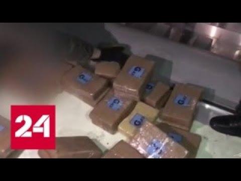 В Петербург пришел контейнер с кокаином в бананах - Россия 24
