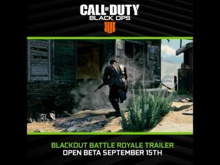 Call of Duty Black Ops 4 - Blackout Battle Royale