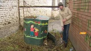 Черви и компостная яма. Как из мусора получить экопродукт