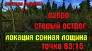 Русская рыбалка 4рр4 - озеро Старый острог. Локация Сонная лощина.