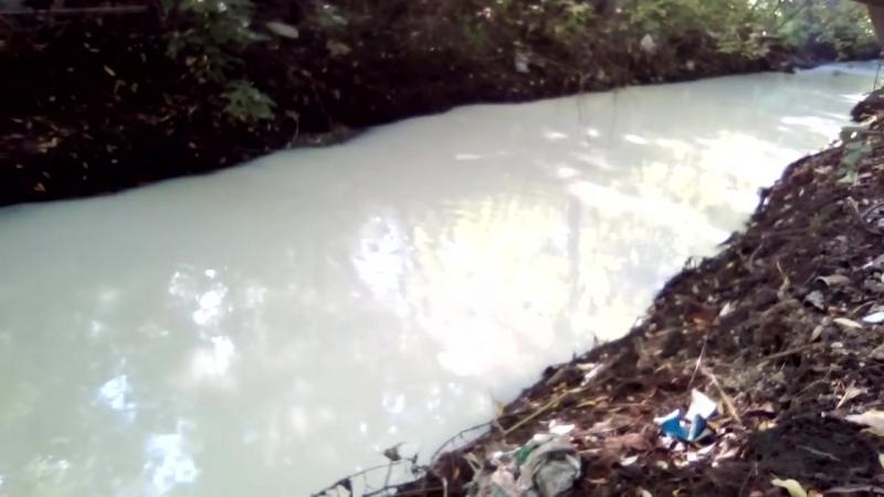 Белая мутная река ужаснула жителей Барнаула