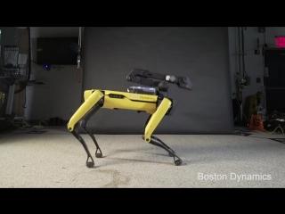 Робот SpotMini танцует под Бруно Марса [NR]