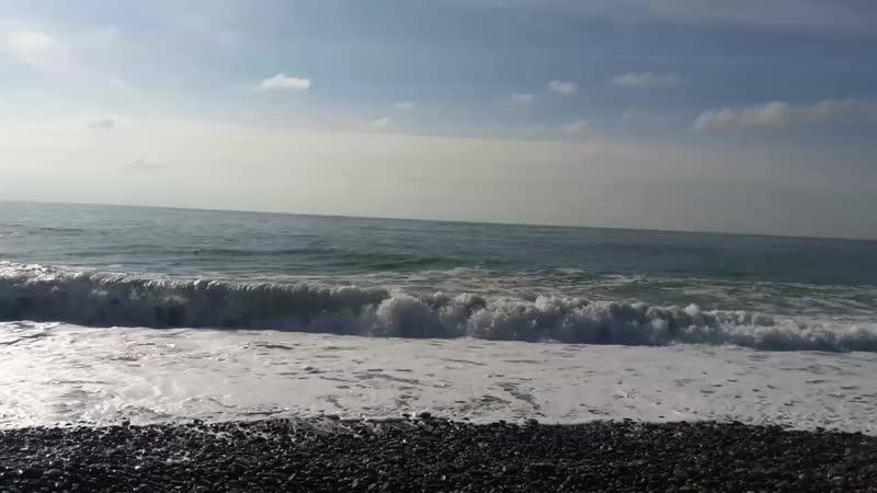 Черное МореЧайкиСочиАдлерНоябрь2018