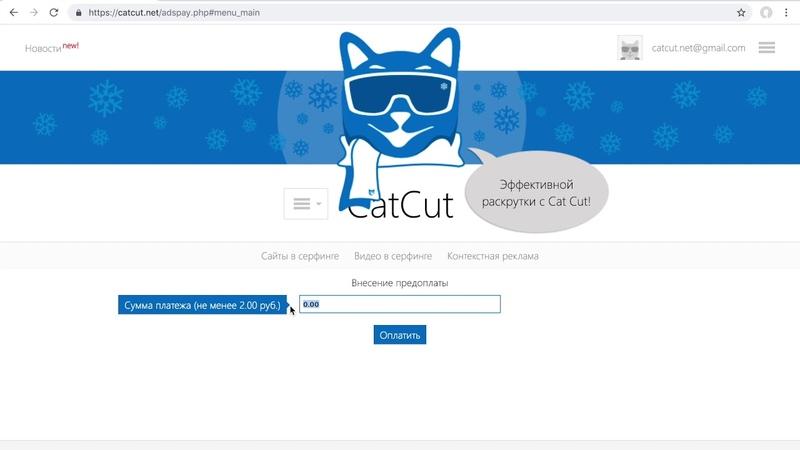 Пополнение баланса CatCut через PayPal