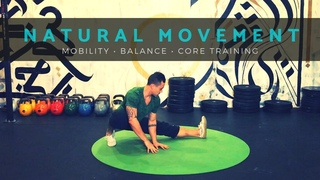 LOVE YOGA? TRY THIS NATURAL MOVEMENT WORKOUT. Mobility, Balance, Core [Follow Along, No Equipment]