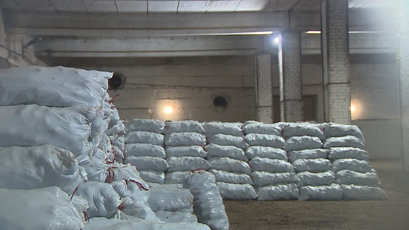 В подземном складе Городищенского района хранятся тонны свеклы