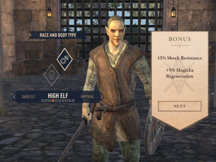 Высокие эльфы в The Elder Scrolls Blades