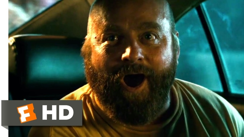 The Hangover Part II (2011) - They Shot the Monkey! Scene (56) | Movieclips