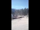 Отара овец возвращается на зиму в долину