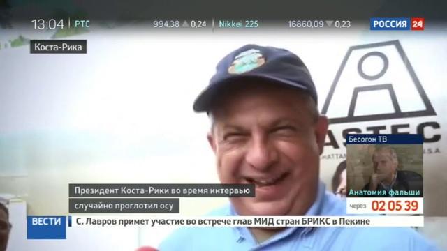 Новости на Россия 24 • Президент Коста-Рики проглотил осу