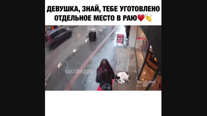 Vine Погреб