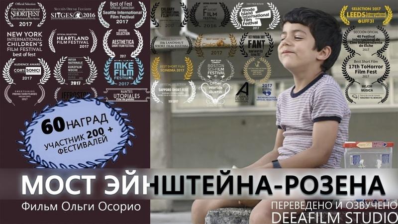 Короткометражка Мост Эйнштейна Розена