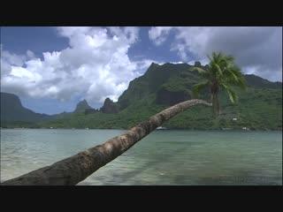 Таити.аудиоряд- clean bandit feat. marina & luis fonsi