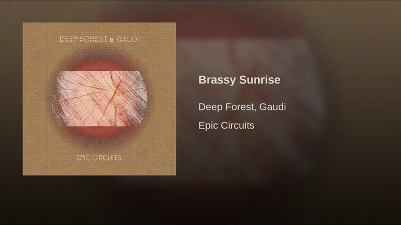 Brassy Sunrise