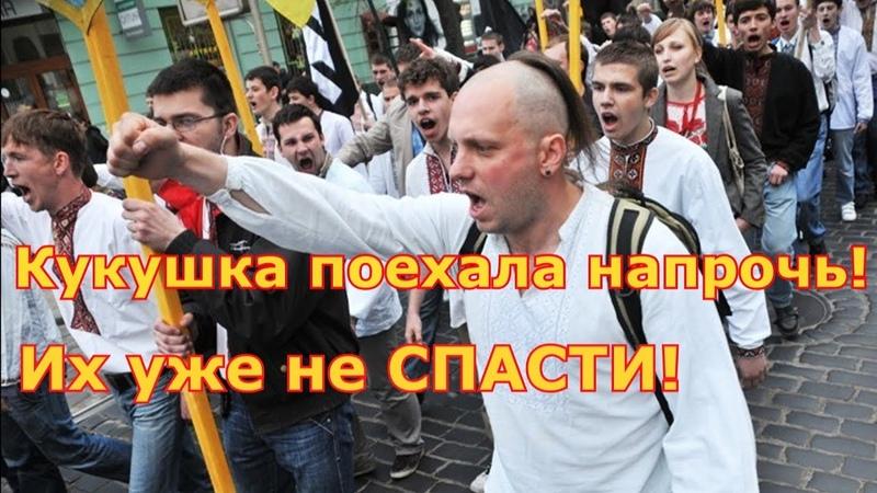 Перемога Украины, превратилась в свидомое побоище!