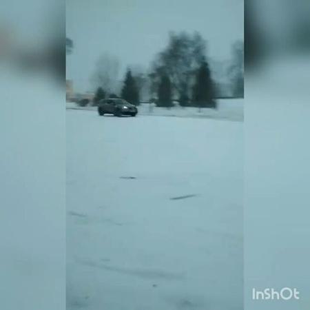 Shprot_yrb video