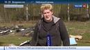 Новости на Россия 24 • Сотни костей и трупов: на севере Подмосковья нашли свалку мертвых собак
