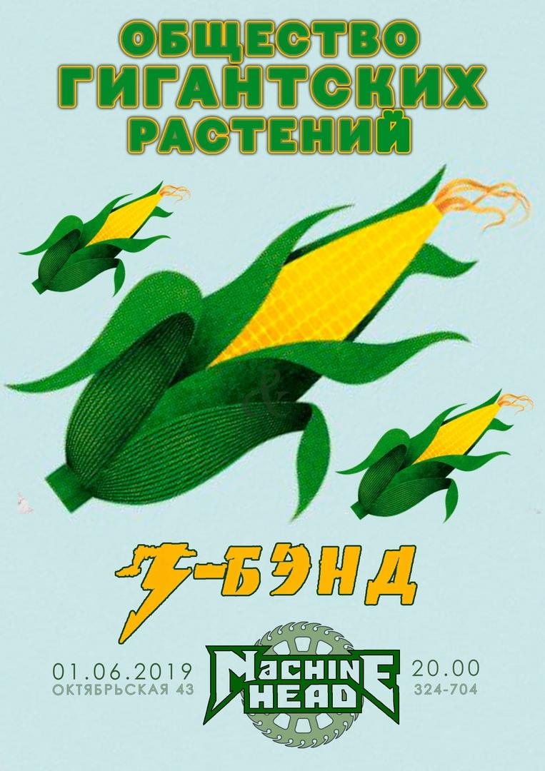 Афиша ОБЩЕСТВО ГИГАНТСКИХ РАСТЕНИЙ & З-БЭНД