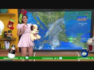 Прогноз погоды в мексике - yanet garcía