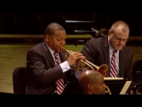 Bees Bees Bees from SPACES by Wynton Marsalis