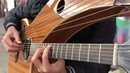 Seven Nation Army on a Harp Guitar Jamie Dupuis