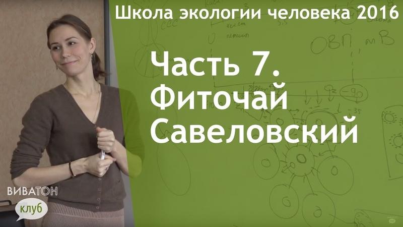 Часть 7. Фиточай Савеловский (чай Виватон)