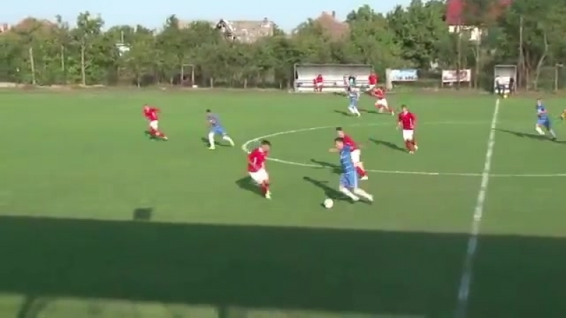 Dog comes on the pitch injures player life goes on Romanian football brilliance