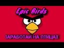 EPIC BIRDS/КАК ЗАРАБОТАТЬ ?