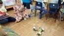 Детский центр робототехники Умник - 2 робота Майло вместе перевозят третьего