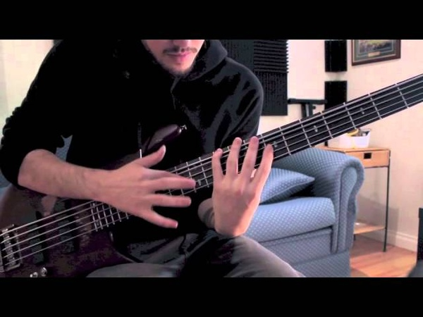 Monuments I The Creator bass cover Toby Peterson Stewart