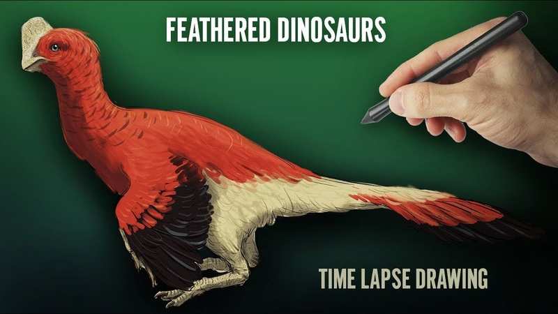 FEATHERED DINOSAURS. Time Lapse Drawing. Digital illustration