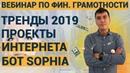 Вебинар по Финансовой грамотнорсти в интернете Виды проектов РОБОТ SOPHIA как живой пример