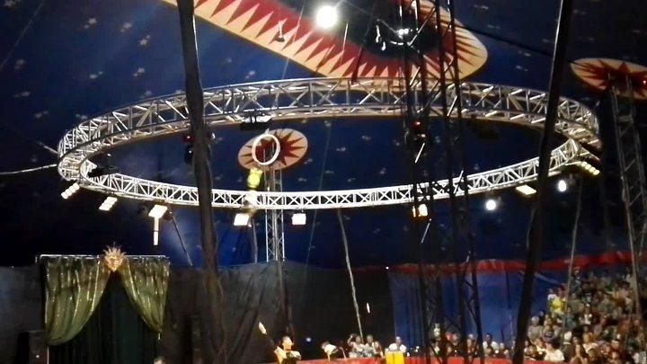 Выступление в цирке 6