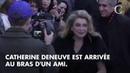 PHOTOS. Catherine Deneuve, Cate Blanchett, Léa Seydoux : les stars au rendez-vous au défilé Louis Vu
