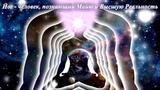 ПРОБУЖДЕНИЕ ЧЕЛОВЕЧЕСТВА (Будхическое тело человечества) 2019 Отец АБСОЛЮТ приняла Марта