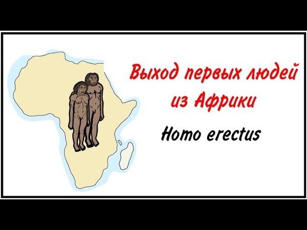 Как древние люди вышли из Африки