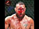 #mma #ufc #habibnurmagomedov#connormcgregor #russia#challenge #boxing #sport #tonyferguson