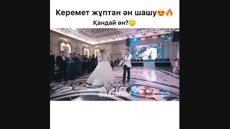 Video-2018-09-04-17-18-11