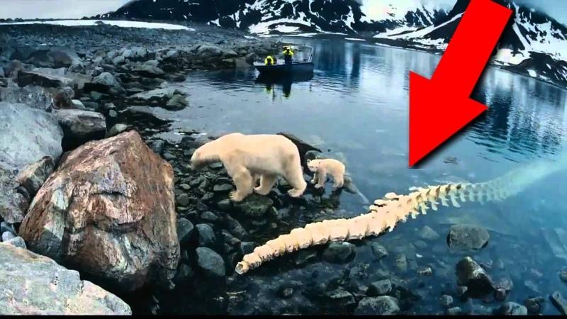 Древнее наследие Арктики! То, что было найдено - поражает фантазию!