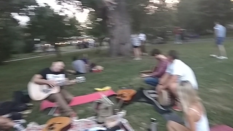 19.08.18 19ч 33мин. Музыкальный пикник Тоби и Крис. Парк Горького.