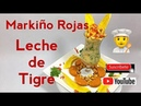 PERU Como se hace LECHE DE TIGRE Gastronomia Peruana Lima Peru 2019 Markiño Rojas PERUVIAN FOOD