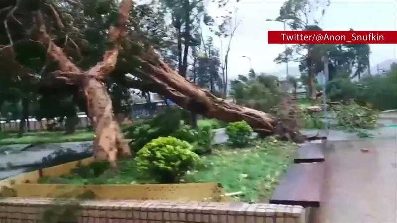 Parts of Hong Kong in tatters in wake of Typhoon Mangkhut